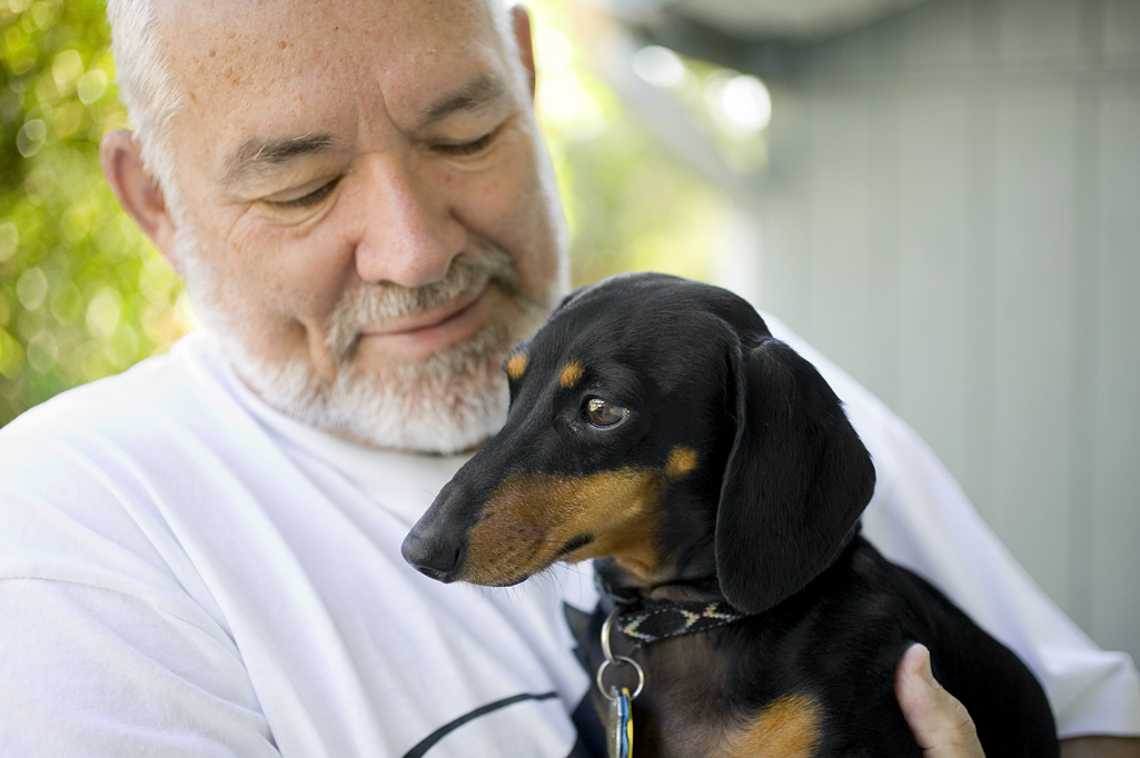man holding doxie